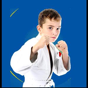 Martial Arts Legacy Martial Arts Karate for Kids