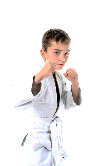Martial Arts Legacy Martial Arts -Karate Kids